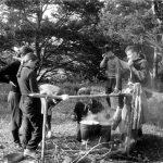 Коля Головчинер: На Подборовском мысу. Чудское озеро, 1960г.