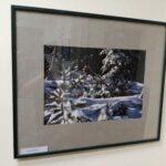 Самолва: Фотографии с выставки Т. Наместниковой