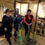 Татьянин День в Самолве 2018: На экскурсии по центру